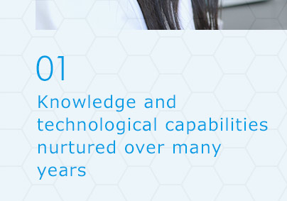 01 Knowledge and technological capabilities nurtured over many years